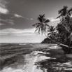 A beach in Mahe by Christian Del Rosario